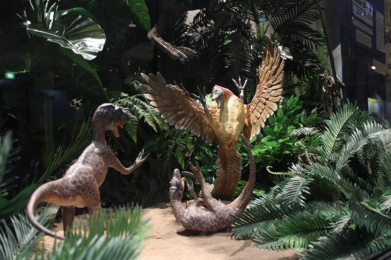 National-Dinosaur-Museum-Resize