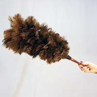 How Does a Feather Duster Work  FlyLadynet