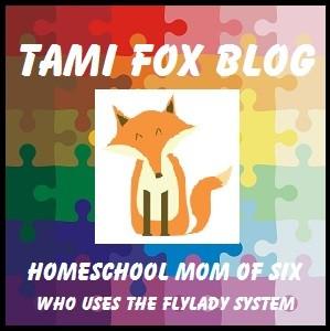 HSTamifoxblog
