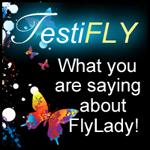 testifly
