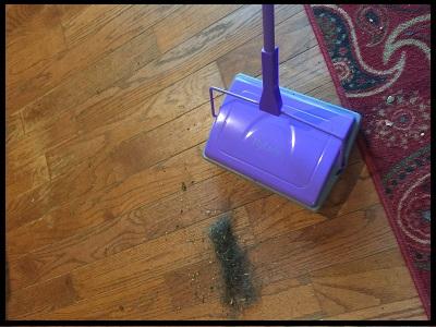 carpetsweepa2