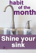 Shining Your Sink